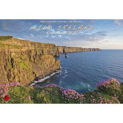 A4 Wild Ireland Calendar 2021 by Liam Blake