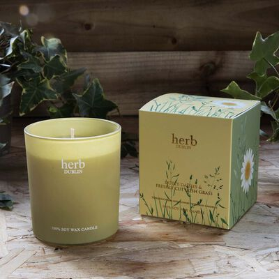 Dotey Daisies And Freshly Cut Irish Grass 35 Hour Soy Wax Candle  235g