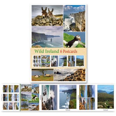 Pack Of Six Postcards Depicting Scenes Of Wild Ireland