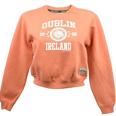 Ladies Dublin Ireland Sweater With Stars Print  Nude Colour