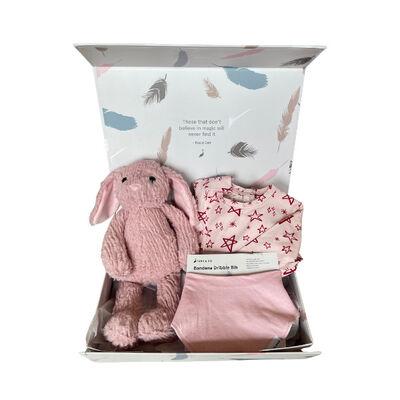 Stork & Co Gift Set With Pink Star Designed Sleepsuit, Bib & Pink Bunny