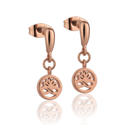 Newbridge Silverware Rose Gold Plated Stud Earrings Clear