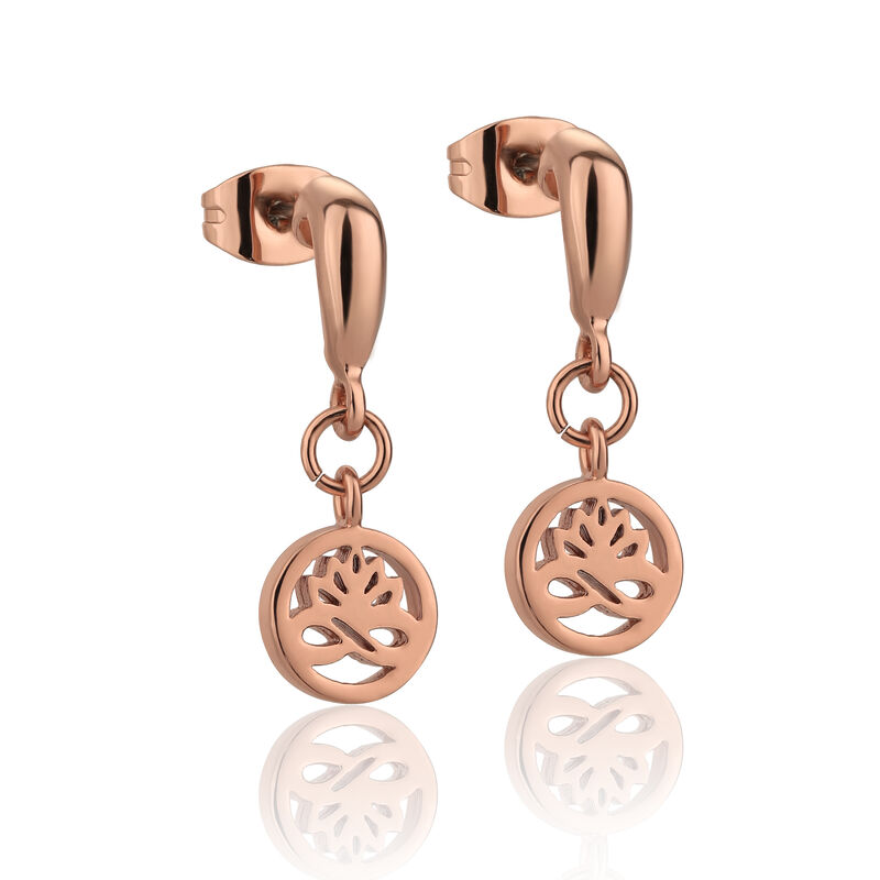 Newbridge Silverware Rose Gold Plated Stud Earrings Clear