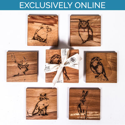 The Native Collection Coasters ( Set of 6)