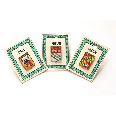 Heraldic Lapel Pins With Family Coat Of Arms  County Crest And Souvenir Title