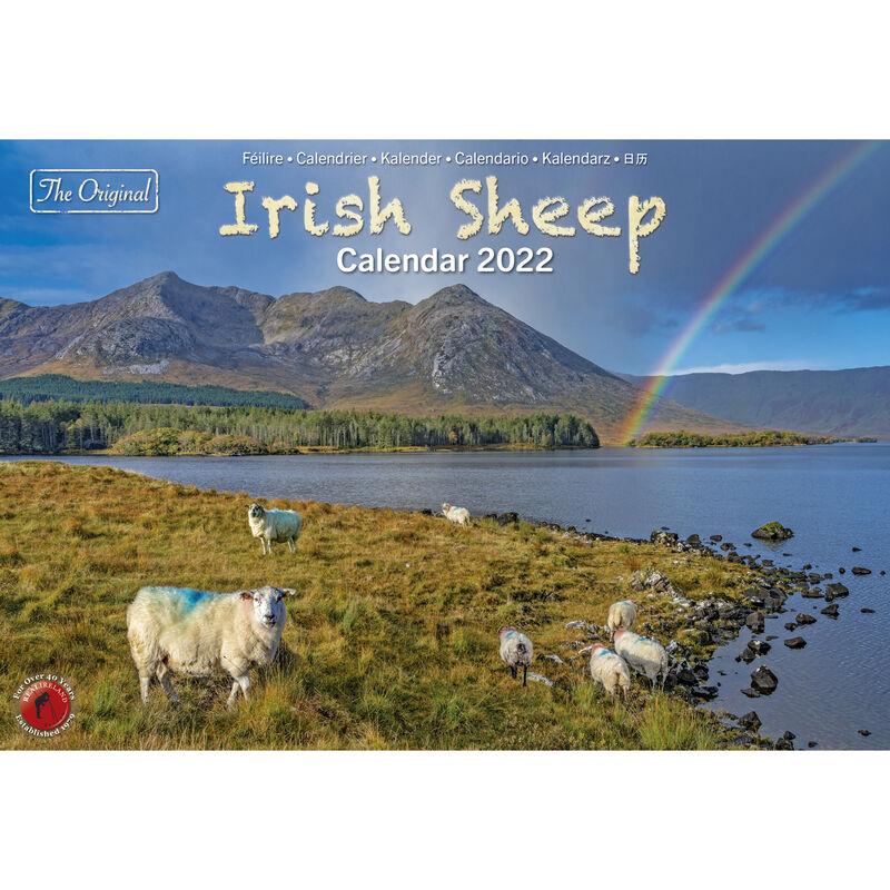 A4 Irish Sheep 2022 Calendar by Liam Blake