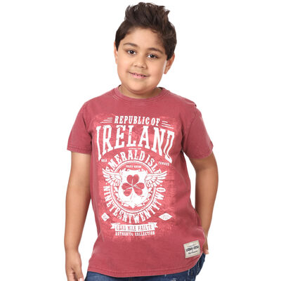 Kids T-Shirt Republic Of Ireland Celtic Nations Established Nineteen Twenty Two, Burgundy Colour