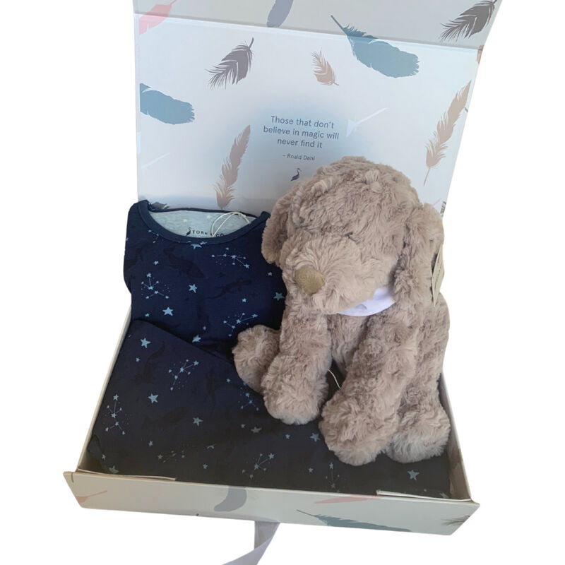Stork & Co Navy Pyjamas With Star Design & A Dog Teddy