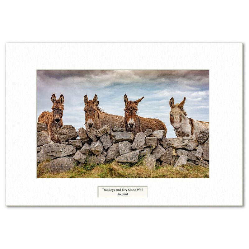 Visions Of Ireland Mounted Prints – Donkeys And Dry Stone Wall