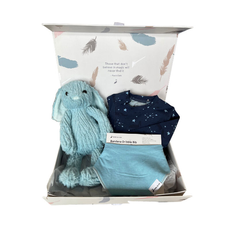 Stork & Co Gift Set With Geological Designed Baby Sleepsuit, Bib & Blue Bunny