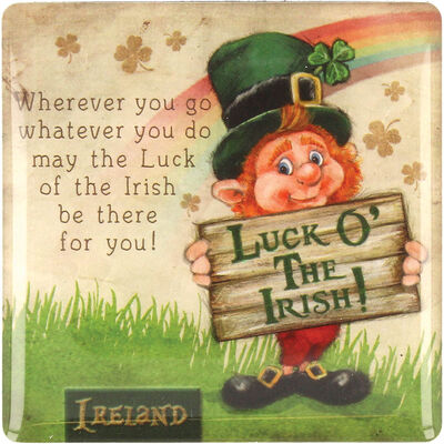 McMurfy Luck O' The Irish Leprechaun Designed Epoxy Magnet With 'Where You Go' Saying
