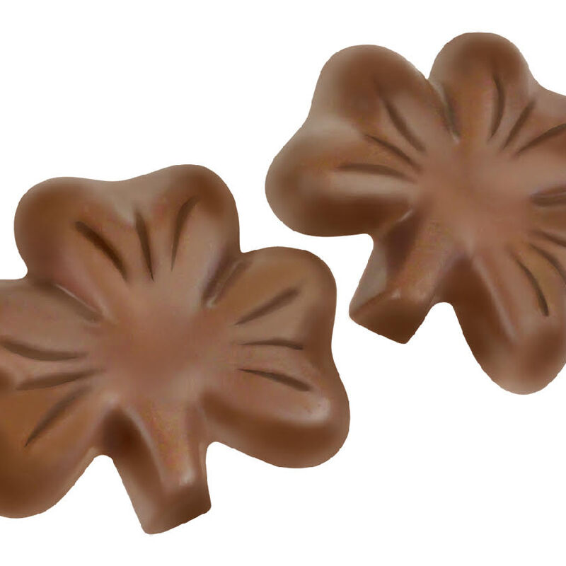 Chocolate Shamrocks In Can